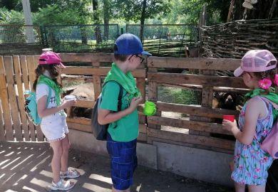 Екскурсія до міні-зоопарку «Бабусине подвір'я»